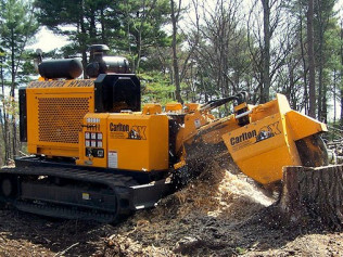 stump grinding pittsford ny